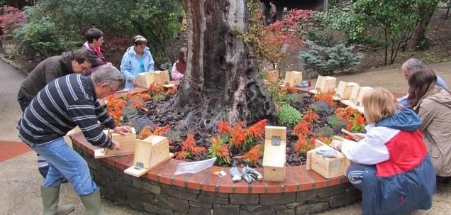 Jardin_Botanico_Santa_Catalina_Taller