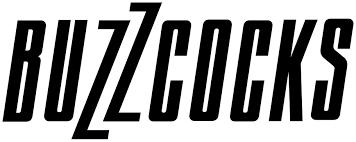 BUZZCOCKS Gasteiz Calling