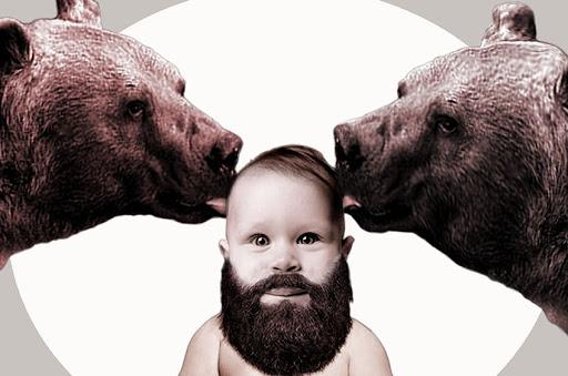 Ave osos